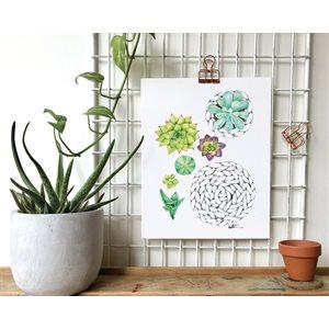 Carte de Souhait - Minis plantes